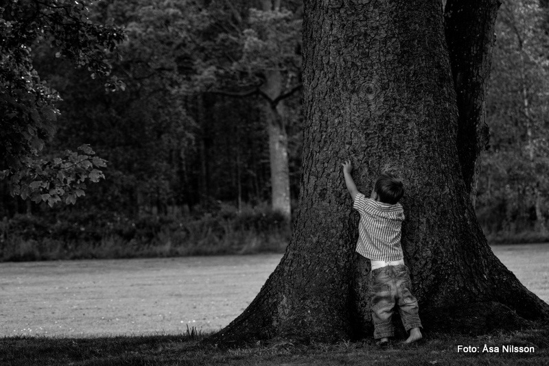 A boy and his tree.  Nikon D7000. ISO 250. 1/250 sekund. f/4.0