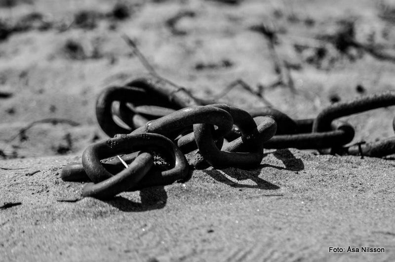 Chain reaction. Nikon D7000, Tamron 75-300 mm. ISO 200. 1/1000 sekund. f/5.6.